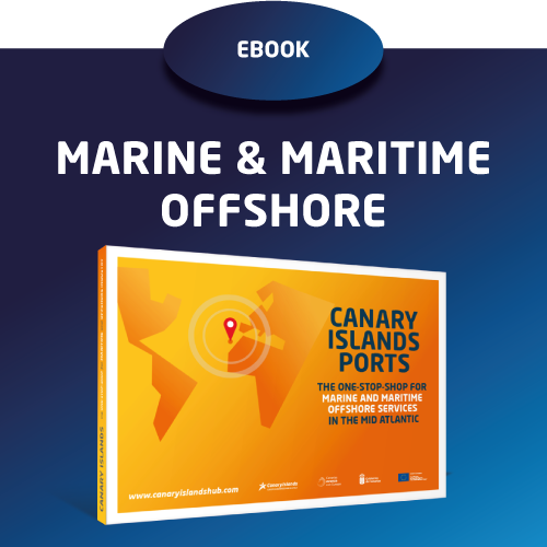 Ebook: Marine and Maritime offshore industry
