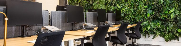 Why advise your clients to open a tech office in the Canary Islands